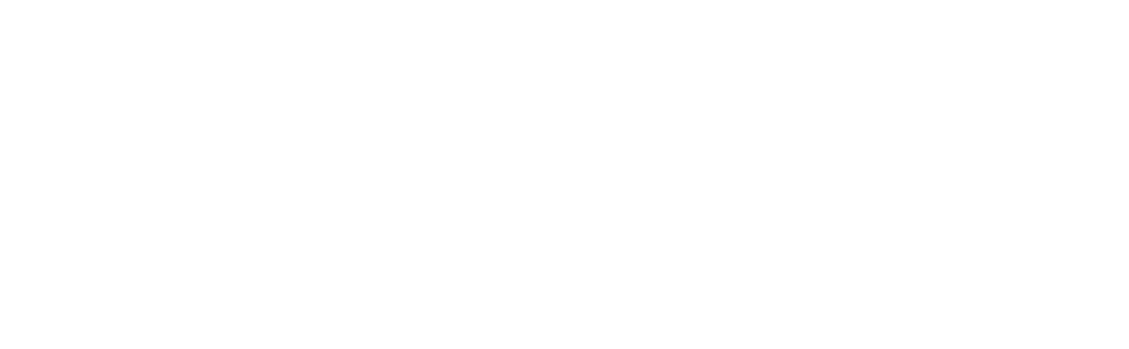 Nirvana Investments